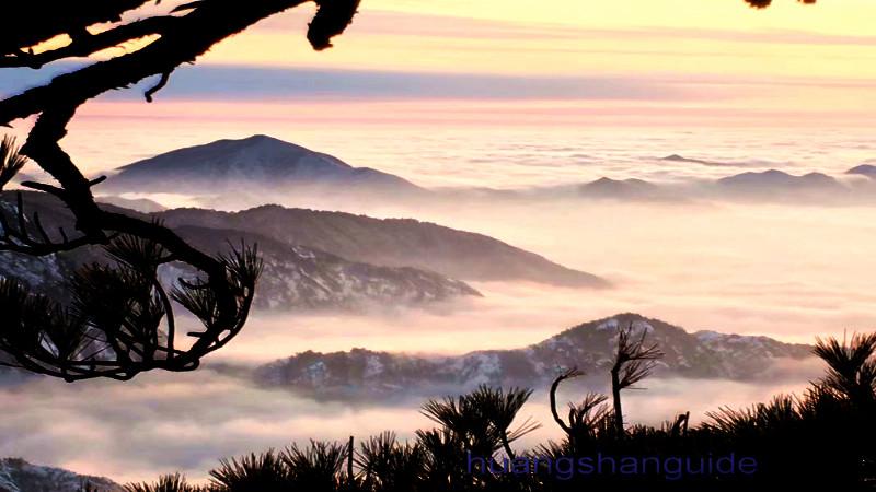 黄山顶2晚+西海大峡谷+周边徽文化全景之旅